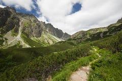山的看法-风景 库存照片