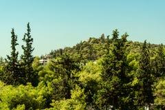 山的秀丽绿色森林 图库摄影