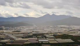 山的种植园在大叻,越南 库存照片