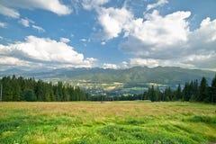 山的绿色全景 免版税库存图片