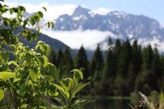 山的美丽的湖在巴伐利亚,德国 库存图片