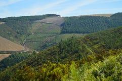 山的美妙的看法在背景Se极限的与阿斯图里亚斯在加利西亚的乡下 自然,风景, 免版税图库摄影