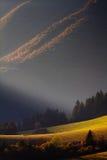 山的草甸在日落 库存照片