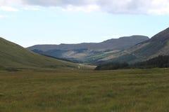 山的草甸 库存照片
