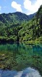 山的蓝色湖在九寨沟风景名胜区名胜 免版税库存照片
