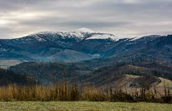 山的象草的草甸与多雪的山峰 库存图片