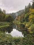 山的镜子池塘与树 图库摄影