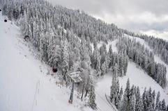山的顶视图与森林的在冬天 库存照片