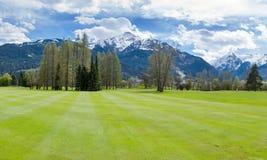 山的高尔夫球场 库存图片