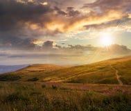 山的高野生植物冠上在日落 免版税库存图片