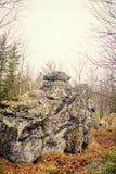 山的黑暗的阴沉的神秘的森林与在前景的巨大的岩石 树的石头、根和土地包括与 库存照片