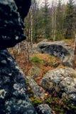 山的黑暗的阴沉的神秘的森林与在前景的巨大的岩石 树的石头、根和土地包括与 免版税图库摄影