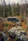 山的黑暗的阴沉的神秘的森林与在前景的巨大的岩石 树的石头、根和土地包括与 图库摄影