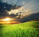 山的绿色草甸。 库存图片