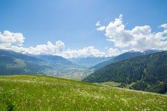 山的绿色草甸 图库摄影