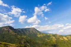 山的绿色草甸 免版税库存照片
