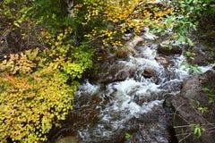在山的小河 库存照片