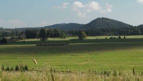山的Timelapse草甸, Bieszczady 影视素材