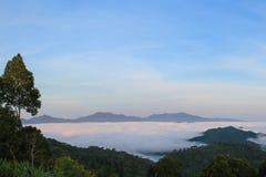 山看法与雾的在雨林里 免版税库存照片