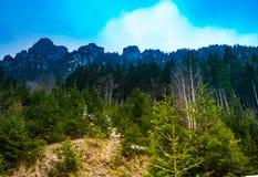 山看法与雾的 库存图片
