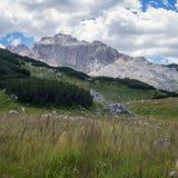山看法在杜米托尔国家公园国立公园 免版税库存照片