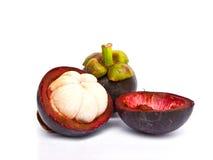 山竹果树作为一个热带水果 库存图片