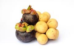 山竹果树和伍伦贡 免版税库存图片