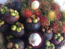 山竹果树和红毛丹 库存照片