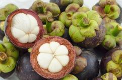 山竹果树夏天显示果子的女王/王后的厚实的紫色皮肤和白色骨肉的果子横断面在塑料袋 免版税库存图片