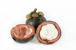 山竹果树 免版税库存图片