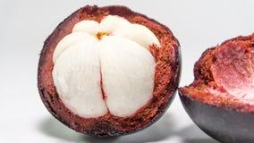山竹果树/Mangustan从亚洲 免版税库存照片
