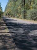 山精神风景小路的足迹的垂直 库存照片