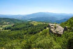 山绿色山谷小河风景 免版税库存照片