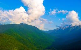 山绿色风景 免版税图库摄影