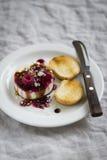 山羊乳干酪用莓果调味汁、香醋和坚果 免版税库存图片