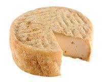 山羊乳干酪 库存照片
