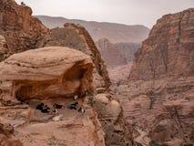 山羊休息在沙漠山的一个壁架下 库存图片