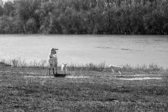 山羊和她的孩子的母亲 孩子充当草甸 查找照片纵向姿势白色的美好的黑色深色的古典女孩魅力您 免版税库存照片
