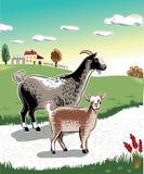 山羊和孩子 免版税库存照片
