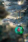 山羊圣诞节中看不中用的物品的年在圣诞树分支的 图库摄影