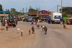 山羊在肯尼亚走害怕的路机器,人们 库存图片