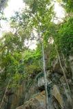 山羊座洞在昆士兰,澳大利亚 图库摄影
