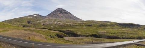 山羊挪威 免版税库存照片