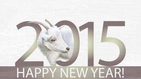 山羊是2015年的标志 免版税库存照片