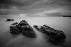 山羊海岛黑白1 库存图片