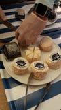 山羊牛奶乳酪分类 免版税库存照片