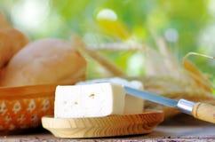 山羊白色乳酪  免版税库存图片