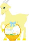 从山羊的产品挤奶,挤奶,山羊 图库摄影