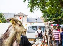 山羊的稻草人被陈列在一个农村市场 免版税库存照片