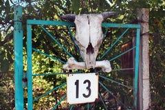 山羊的头骨在门第13的 免版税库存照片